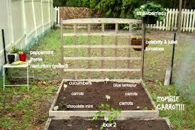raised garden bed layout gardening ideas