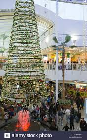 christmas christmas tree sales dh shopping centre cribbs