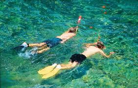 California snorkeling images Lovers cove on catalina island avalon ca california beaches jpg