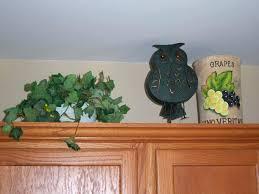 owl home decor extraordinary owl home decor dway me