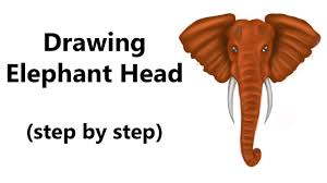 how to draw an elephant head step by step youtube