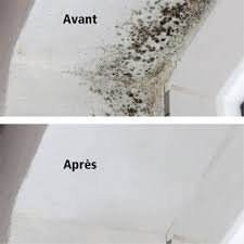 moisissure dans une chambre moisissure plafond chambre enfilez des gants en caoutchouc avant