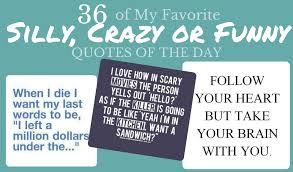 36 of My Favorite Silly Crazy or Funny Quotes For the Day