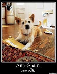 Spam Meme - anti spam meme viral viral videos