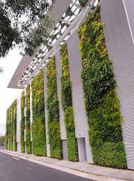 the living wall at the singapore institute of technology