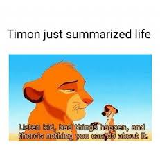 Nothing To Do Meme - timon just summarized life kid bad things happen and can do about it