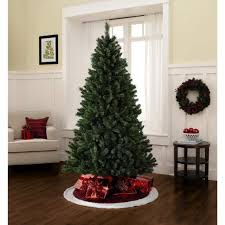 tree unlit tree the douglas fir unlit