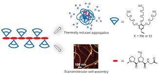 jie fang logo 欢迎光临上海大学聚合物分子设计与合成实验室