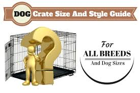 belgian malinois size at 6 months what size dog crate should you get and which type is best