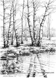 gallery nature pencil art of 2016 drawing art gallery