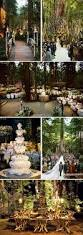 25 best forest wedding decorations ideas on pinterest enchanted