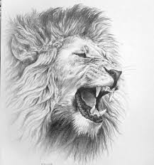 lion and flowers tattoo designs on back all tattoos for men