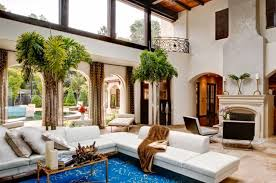 palm tree home decor indoor palms by the twelve oaks group indoor