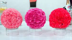 wholesale carnations there s nothing better than fresh wholesale carnations for valentines