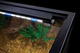 Bright Led Light Strips by Freshwater Aquarium Led Lighting Roselawnlutheran