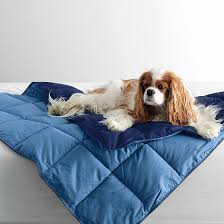 Comforter Store Lacrosse Reversible Dog Comforter The Company Store Dog Beds