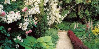 Small Garden Design Ideas Garden Design - Backyard and garden design ideas