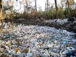 tijuana river ecoblogic