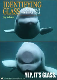 Whaling Meme - 59 best whale whale whale what do we have here images on