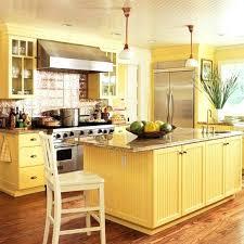 yellow kitchen cabinet light yellow kitchen kakteenwelt info