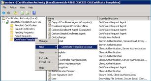 configuring a custom user template