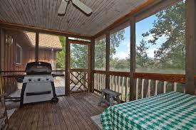 grilling porch black bearblack bear grilling porch large jpg