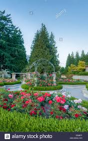 Botanical Gardens Ubc by The Rose Garden Ubc Vancouver British Columbia Canada Stock