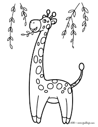 imagenes de jirafas bebes animadas para colorear dibujos animales de la sabana para colorear 37 dibujos de animales