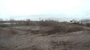 brachfläche forstmulchen einer industriellen brachfläche mit einer mulchraupe