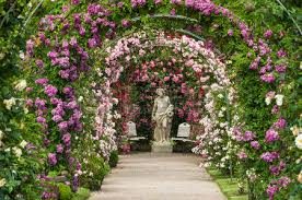flower arch flower arch stock photos royalty free business images