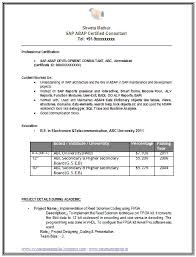 Job Objective On Resume by Example Template Of A Sap Consultant Abap With Great Career