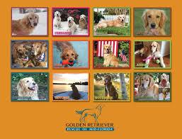 calendars for sale grrmf calendar golden retriever rescue of mid florida