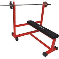 Olympic Bench Press Dimensions Gym Benches U0026 Racks Wholesale Trader From Jalandhar