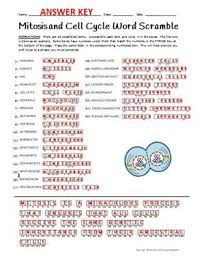Mitosis And The Cell Cycle Worksheet And The Cell Cycle Word Scramble Terminology Review Worksheet