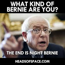 Kind Meme - which kind of bernie are you bernie sanders know your meme