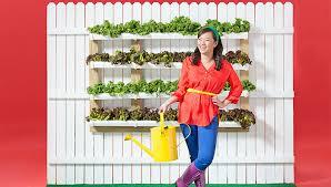 fence gutter vegetable garden
