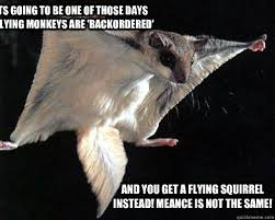 Flying Monkeys Meme - you know its going to be one of those days when your flying