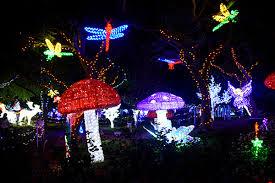hunter valley gardens christmas light spectacular boyeatsworld