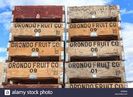packing pallet for orondo ruby cherries at g u0026c farms near