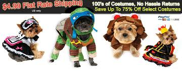 Pauly Halloween Costume Pauly Jersey Shore Dog Costumes Costumes Dogs