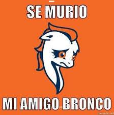 Memes De Los Broncos De Denver - el super bowl xlviii en memes pumas gol