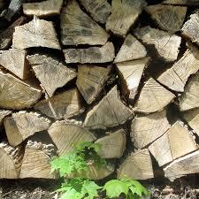 should green homes burn wood greenbuildingadvisor com