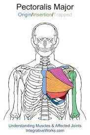 Front Of The Shoulder - trigger points sharp in front of shoulder