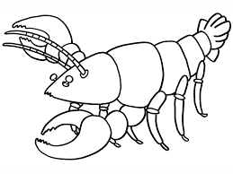 beautiful lobster coloring page 71 for download coloring pages