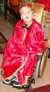 tyrion lannister halloween costume 225 best wheelchair halloween costumes images on pinterest