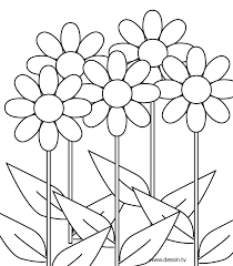 coloring pictures of flowers to print flower