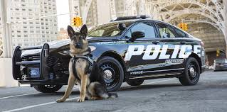 youtube lexus german shepherd ford fusion police responder hybrid first u0027pursuit rated u0027 hybrid