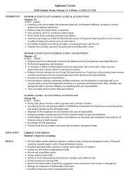 accounting u0026 audit resume samples velvet jobs