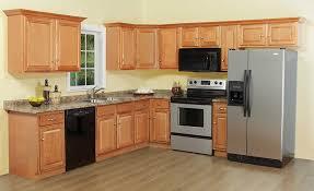 Kitchen Cabinet Refrigerator Cabinet Captivating Oak Kitchen Cabinets Design Kitchen Cabinets