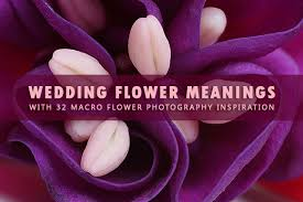wedding flowers meaning wedding flower meanings with 32 macro flower photography